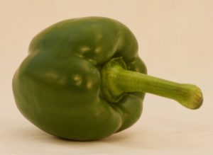 SINGLE GREEN PEPPER